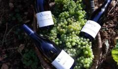 Domaine Serrigny Francine & Marie-Laure WIne Bottles among Their Harvest
