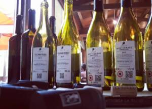 Fattoria La Torre Wine Bottles