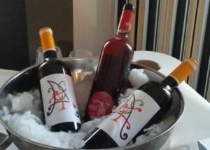 Tasting Celler Capafons Osso Wine