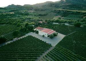 Aerial View of Estates of Olympia Land Estate