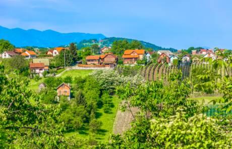 Croatian Uplands wine region