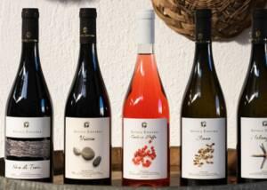 Display of Antica Enotria Wine Bottles