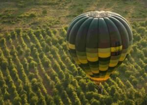 Balloon Flight ta Cantina Todini