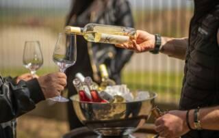Wine Tasting at Crama HIstria