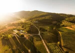 Aerial View of The Estates of Fattoria La Palagina