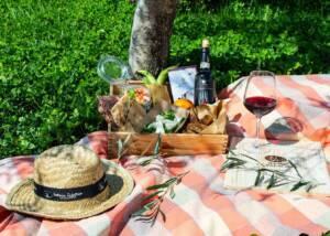 Picnic with a Bottle of Fattoria La Palagina Wine