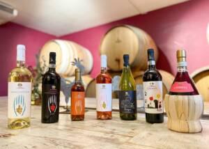 Display of Fattoria La Palagina Wine Bottles
