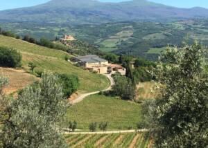 Estates of Poggio di Sotto