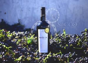 A Bottle of Sacco Vignaioli Apuli Wine Among Harvest
