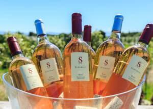 Bottles of Schubert Wines Chilled