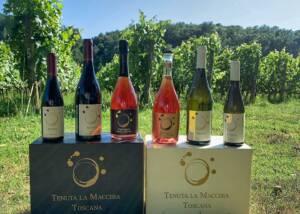 Wine Bottles of Tenuta La Machhia