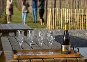 Tasting Wijndomein Helshoven Wine