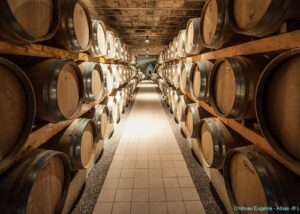 Cellars of Chateau Eugenie