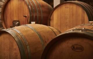 Wine Barrels at Čotova Klet