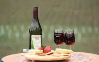 Wine Tasting at Gisborne Peak Winery