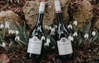 A Couple of Gróf Degenfeld Wine Estate Wine Bottles