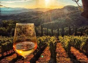 Wine Tasting at I Pilastri