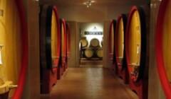 Cellars of Innocenti Soc. Agr.