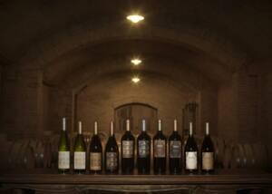 Bottles of Viña Alicia