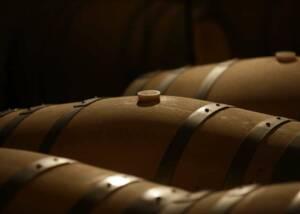 Viña Alicia Wine Barrels