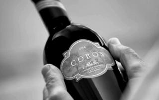Viña Cobos Bottle of Wine