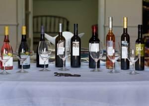 Wine Tasting at Vinyes Dels Aspres